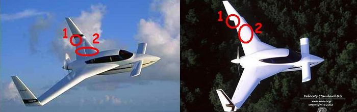 Differences between Long and Short Wing Velocity